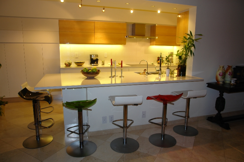 Kitchen Cabinets In South Florida Contemporary